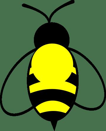 Farbe der Königinnen 2017