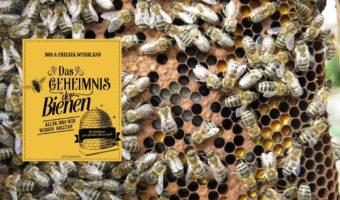 Artikelbild Buchrezension Das Geheimnis der Bienen Alles was wir wissen sollten