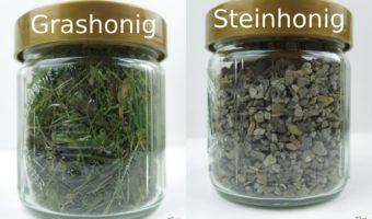 Honigsorten Grashonig und Steinhonig