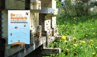 Artikelbild Die Honigfabrik: Die Wunderwelt der Bienen - eine Betriebsbesichtigung